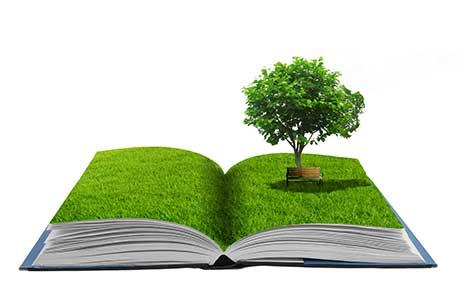Umweltbewusst handeln, der Gesundheit zuliebe